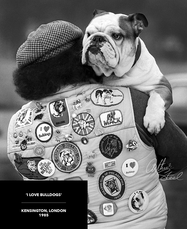 i love bulldogs rare photograph