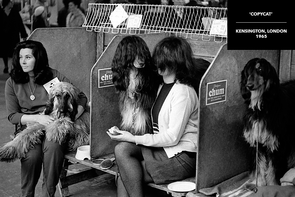 rare black and white photograph crufts